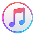 Media Player – iTunes
